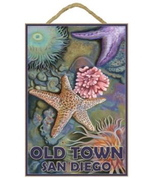 """Tidepool - Lantern Press 7x10 Poster """"Ol"""