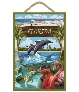Dolphins, manatees, flamingos and beach
