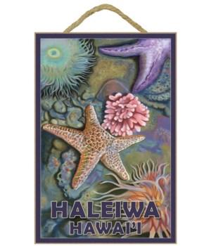 """Tidepool - Lantern Press 7x10 Poster """"Ha"""