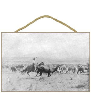 Cowboy on Horseback Cuts a Cow from the
