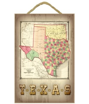 Texas - (1866) - Panoramic Map