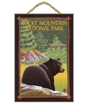 Bear in Forest - Rocky Mountain National