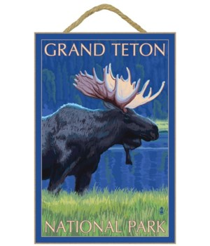 Grand Teton Nat'l Park - Moose at Night