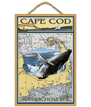 Hyannis Whale Watcher - Cape Cod, MA - L