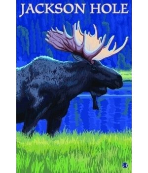 Jackson Hole, Wyoming - Moose at Night -
