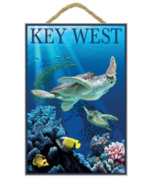 Key West, Florida - Sea Turtles - Lanter