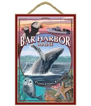 Bar Harbor, Maine - Wildlife Montage - L