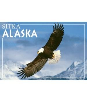 Soaring Eagle - Sitka, Alaska - Lantern