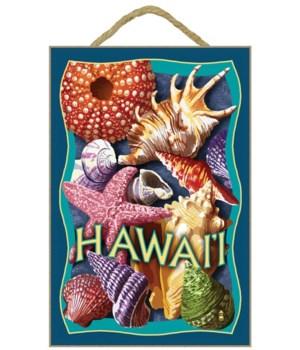 Hawaii - Shells Montage - Lantern Press