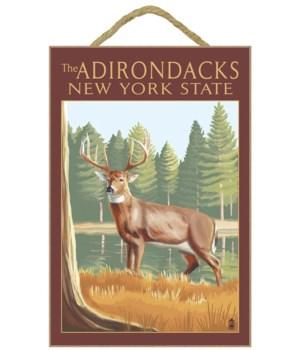 The Adirondacks, New York State - White