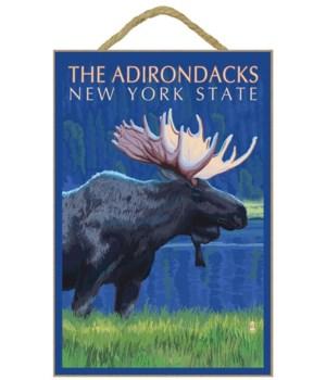 The Adirondacks, New York State - Moose