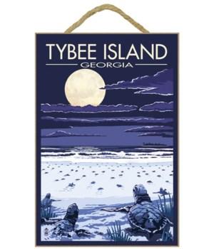 Tybee Island, Georgia - Sea Turtles Hatc