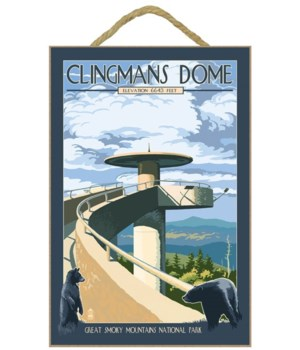 Clingmans Dome - Great Smoky Mountains N