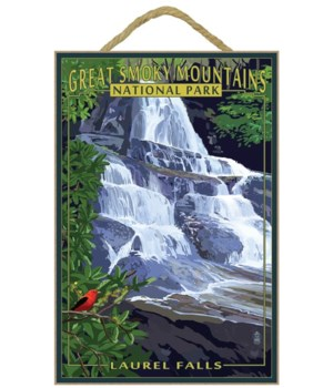 Laurel Falls - Great Smoky Mountains Nat
