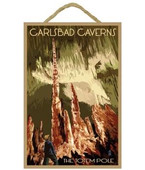 Carlsbad Caverns National Park, New Mexi
