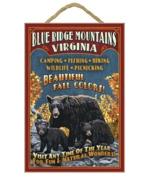 Blue Ridge Mountains, Virginia - Black B