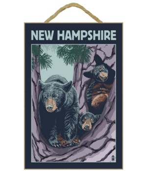 New Hampshire - Bear and Cubs in Tree -