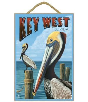Key West, Florida - Brown Pelican - Lant
