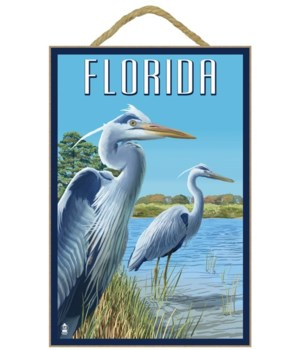 Blue Herons in grass - Florida - Lantern