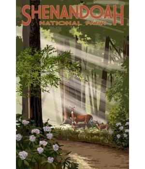 Shenandoah Nat'l Park - Deer & Fawns
