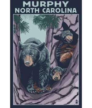 Murphy, north Carolina - Black Bears - L
