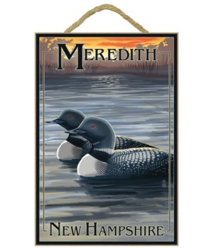 Meredith, New Hampshire - Loons - Lanter