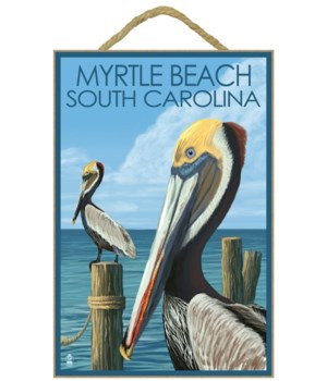 Myrtle Beach, South Carolina - Pelicans