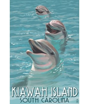 Kiawah Island, South Carolina - Dolphins