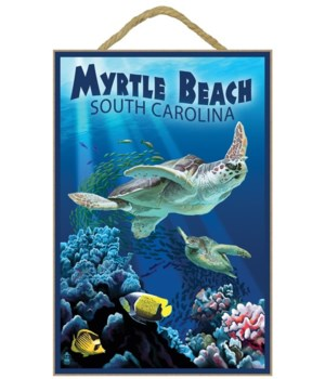 Myrtle Beach, South Carolina - Sea Turtl