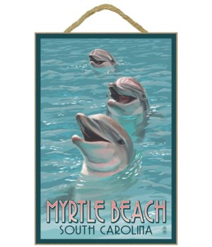 Myrtle Beach, South Carolina - Dolphins
