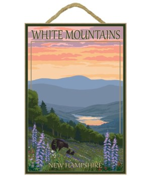 White Mountains, New Hampshire - Bears &