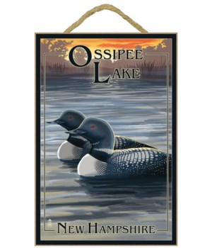 Ossipee Lake, New Hampshire - Loon Famil