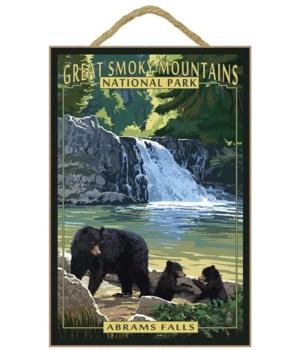 Abrams Falls - Great Smoky Mountains Nat