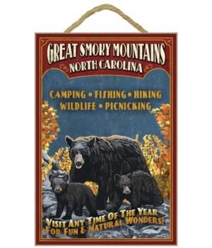 Great Smoky Mountains, north Carolina -