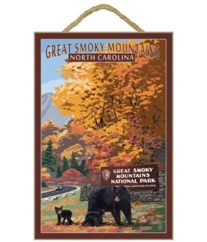 Great Smoky Mountains - Park Entrance &