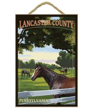 Lancaster County, Pennsylvania - Horse P