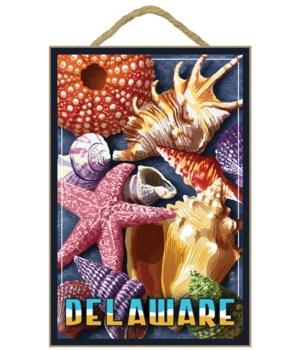 Delaware - Shell Montage - Lantern Press