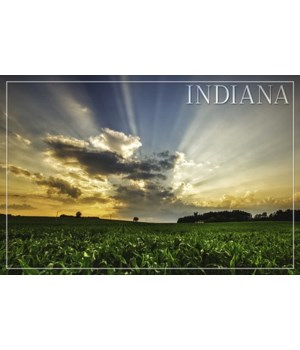 Indiana - Farm & Sunrise