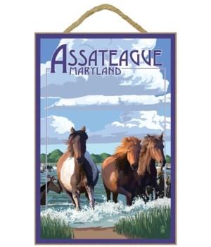 Assateague, Maryland - Pony Swim - Lante