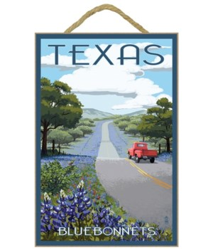 Texas - Bluebonnets & Highway- Lantern P