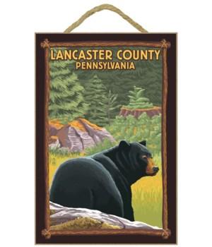 Lancaster County, Pennsylvania - Black B