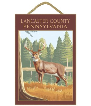 Lancaster County, Pennsylvania - White T