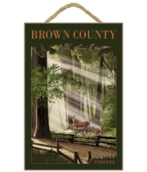 Brown County, Indiana - Deer and Fawns -