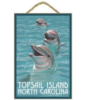 Topsail Island, north Carolina - Dolphin