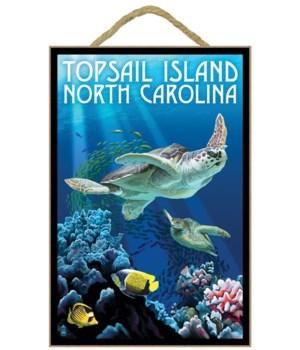 Topsail Island, north Carolina - Sea Tur