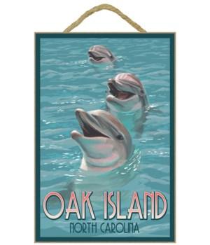 Oak Island, north Carolina - Dolphins Sw