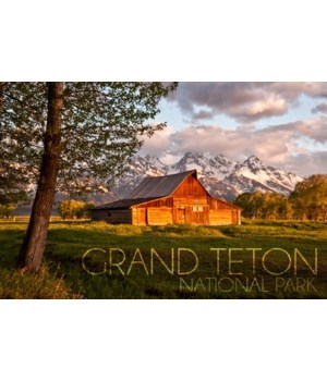 Grand Teton National Park, Wyoming - Bar