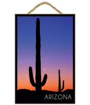 Arizona - Cactus & Moon Photograph