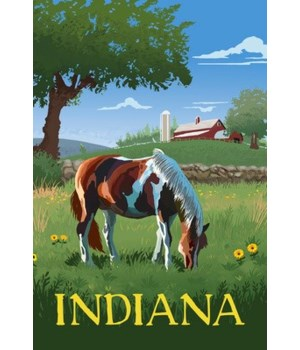 Indiana - Horse in Field