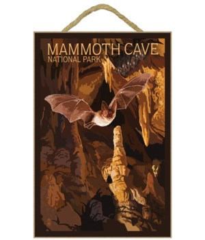 Mammoth Cave - cave bats